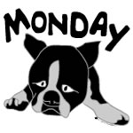 Dog Day Monday